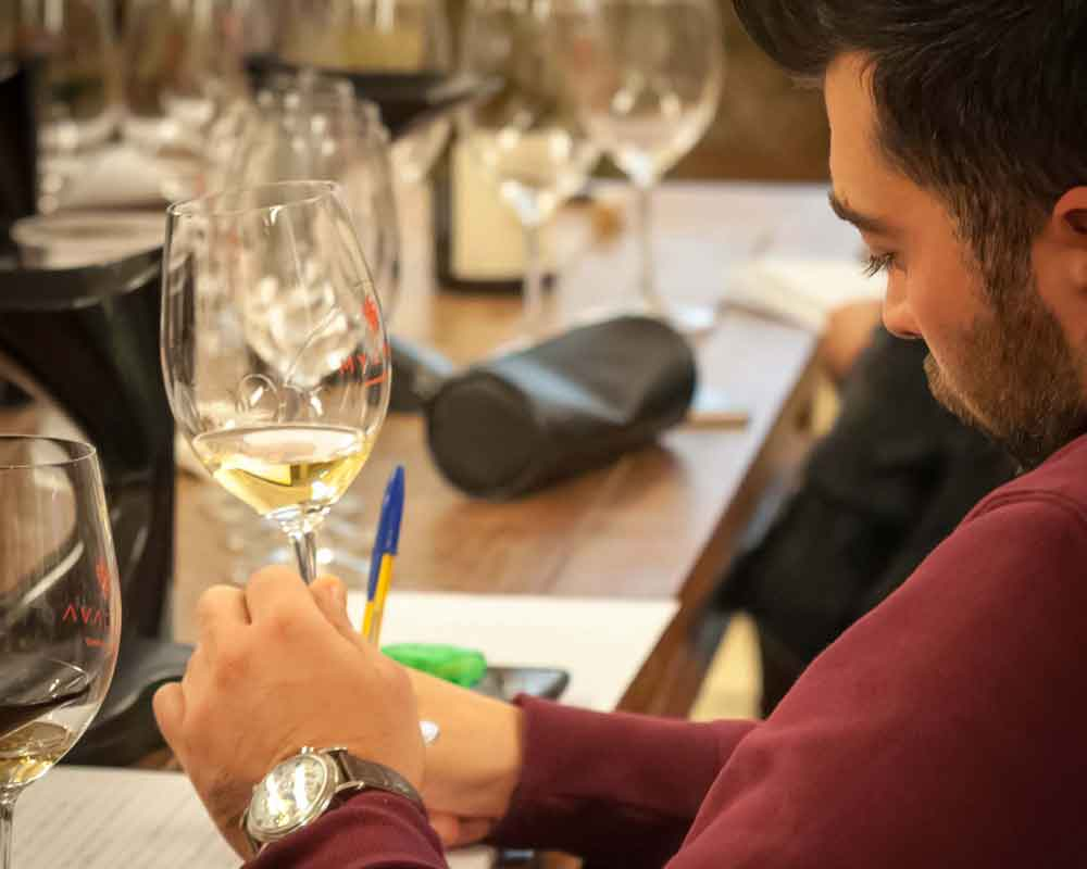 Wine Professional & Sommelier Course